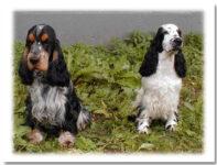 Milton och syster Tuva